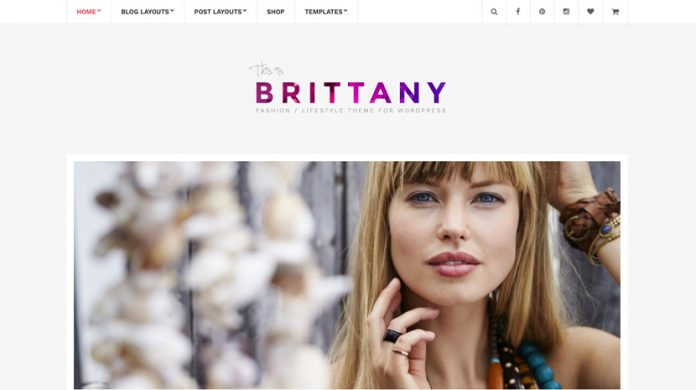 Brittany Version: 2.1 WordPress Theme Free Download