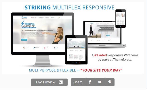 Striking MultiFlex Ecommerce Responsive Theme