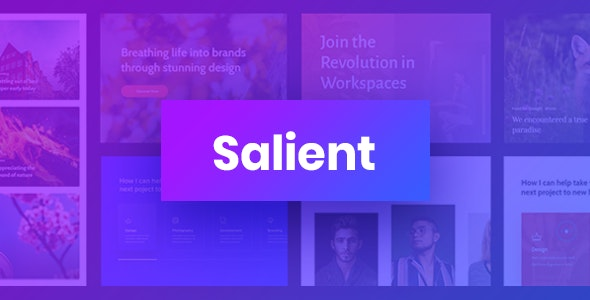 Salient Multi-Purpose Wordpress Theme