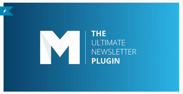 Mailster Email Newsletter Wordpress Pluigin