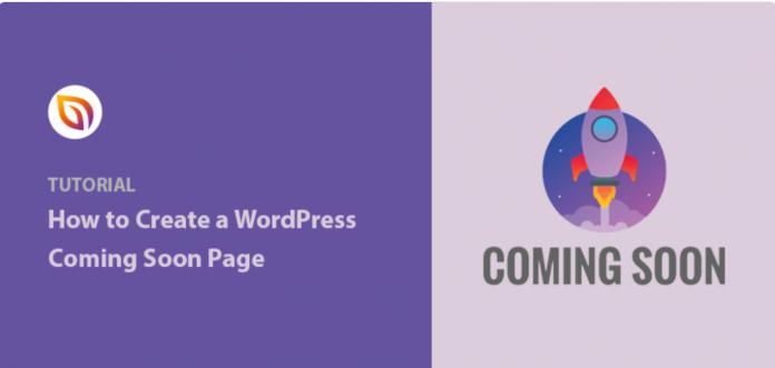 SeedProd Coming Soon Page Pro stub WordPress